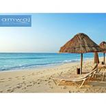 amwaj north coast sabbour
